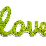 Quadro vegetale Love - Giardango € 36,90