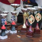 Le coppe riservate ai vincitori dei giochi