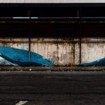 Zonacammarata balena
